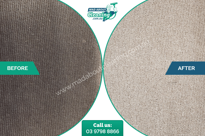before after melbourne carpet cleaning